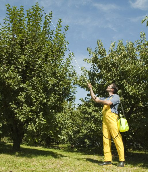 Штанга опрыскивателя для высоких деревьев