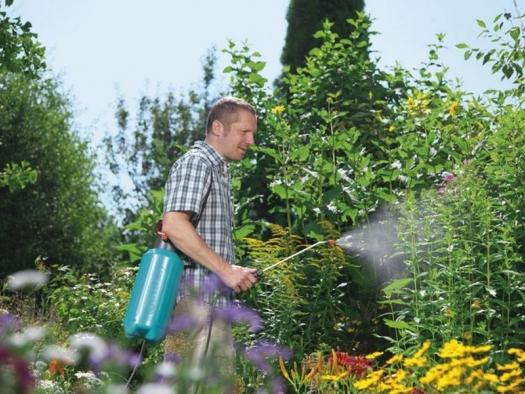 Садовый опрыскиватель, обзор самых популярных видов